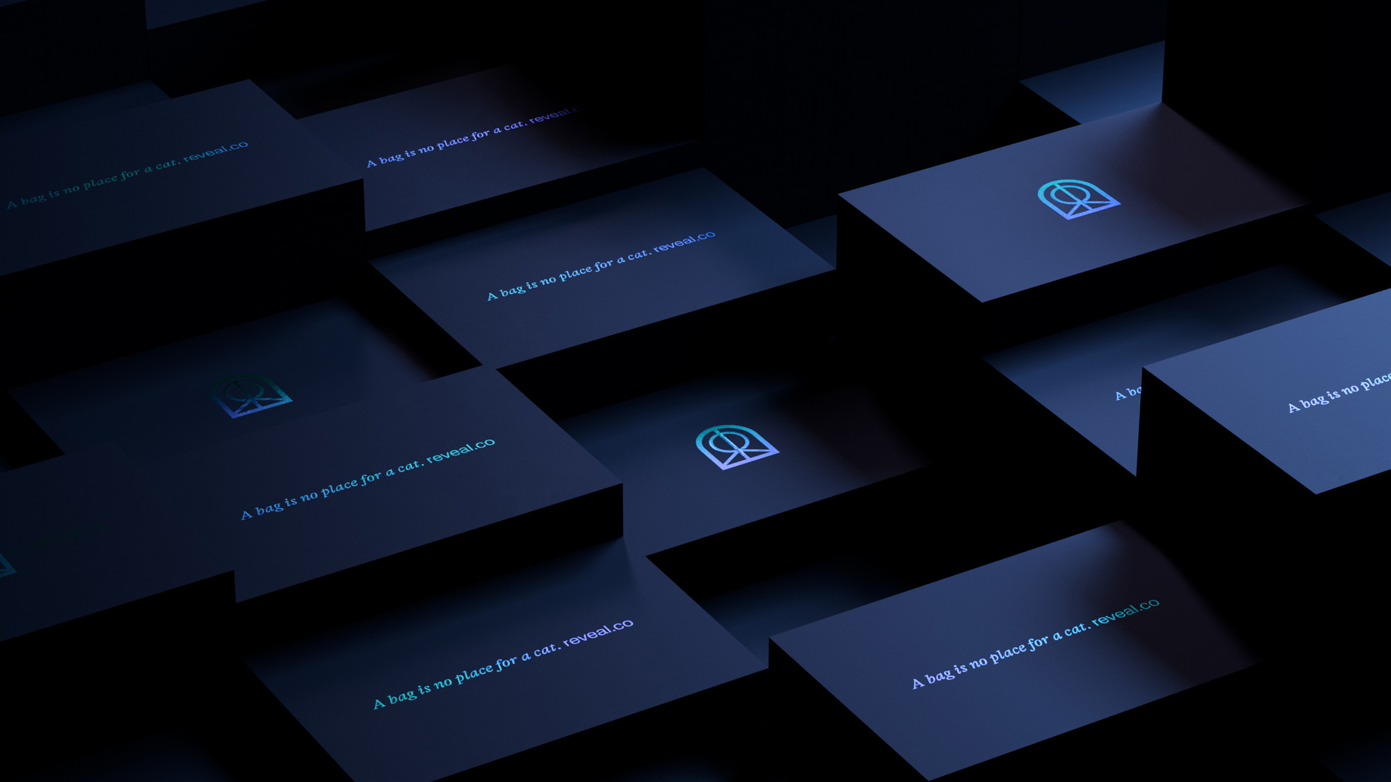 New Name, Logo, and Identity for Reveal by Ragged Edge