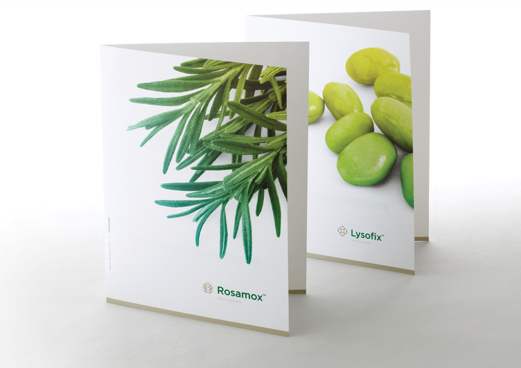 Identity Materials for Kemin Health, L.C. by Measure, Inc.